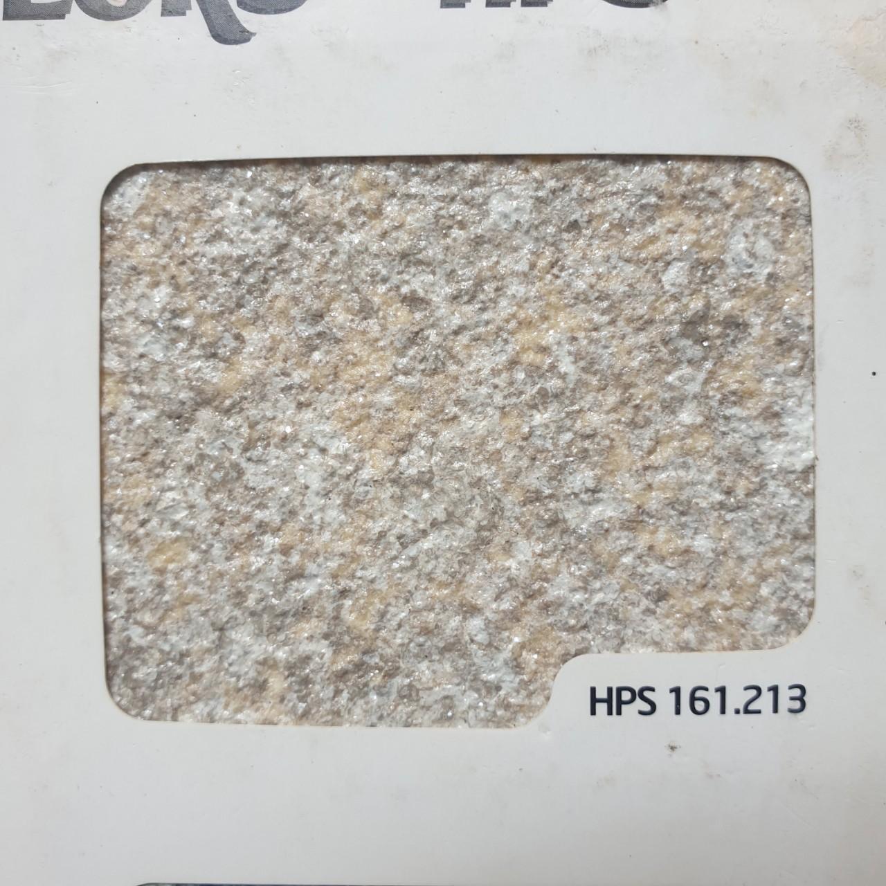 HPS 161 213
