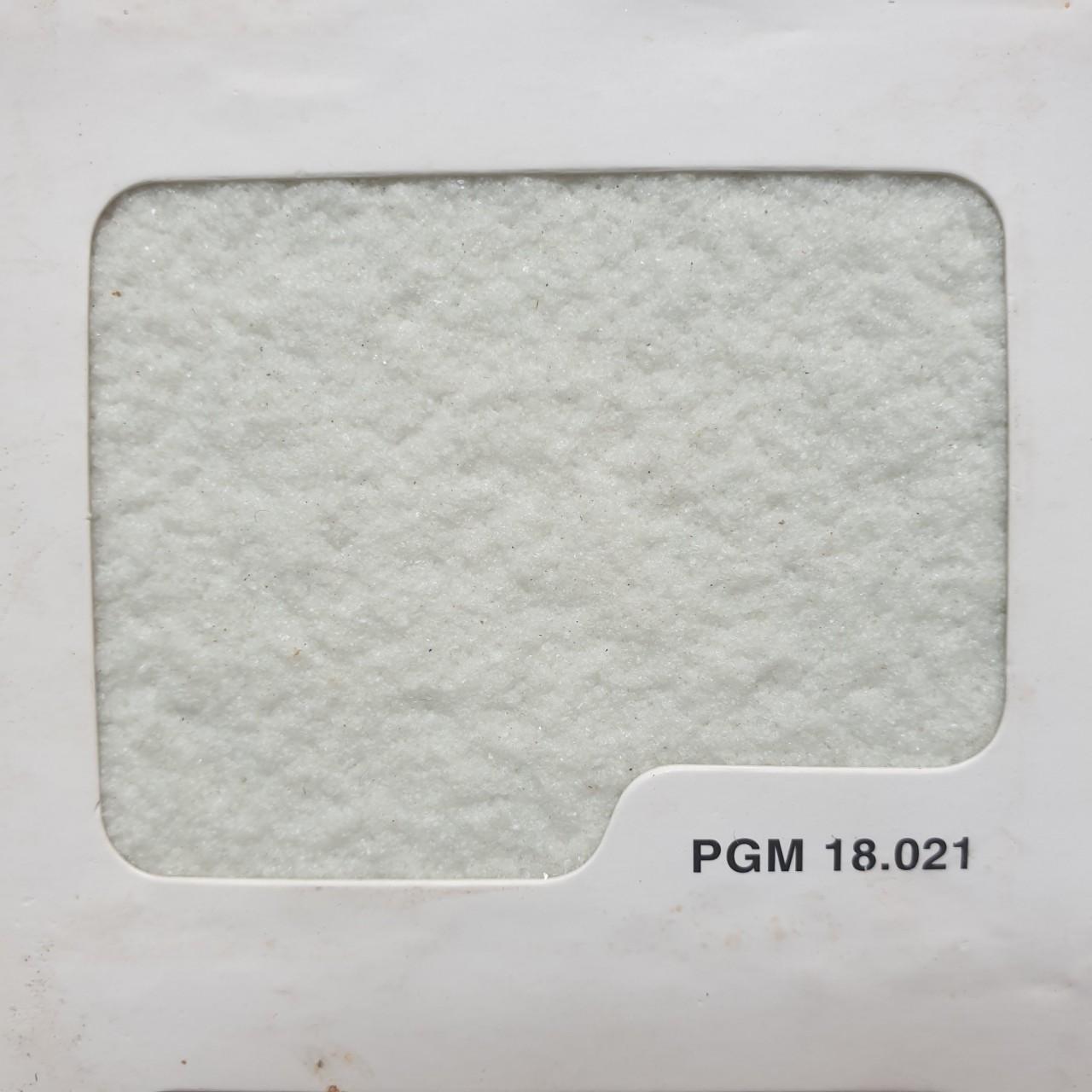 PGM 18.021