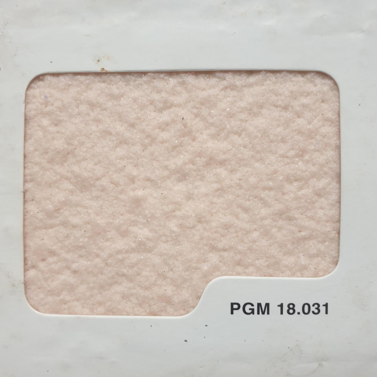 PGM 18.031