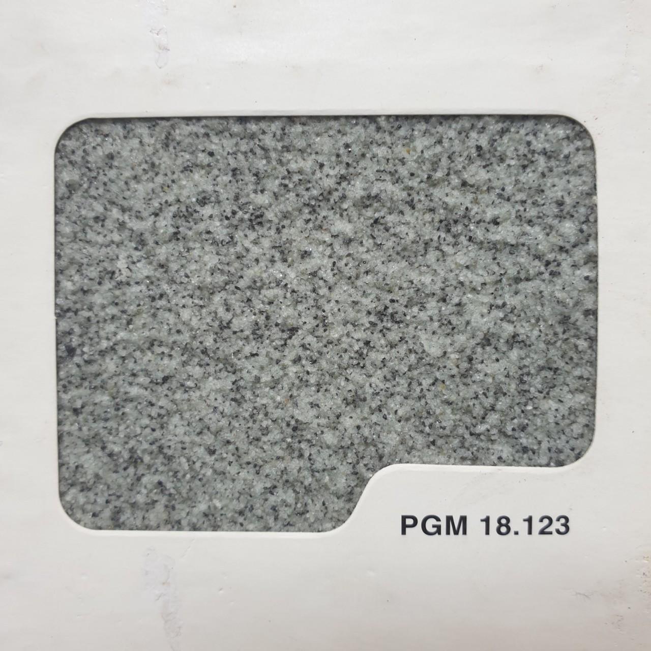 PGM 12.123